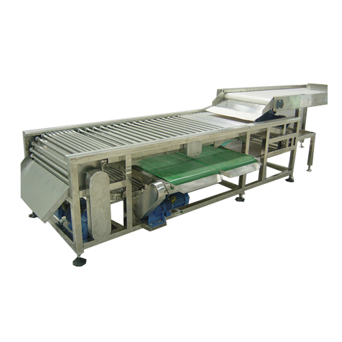 The fruit sorting machine