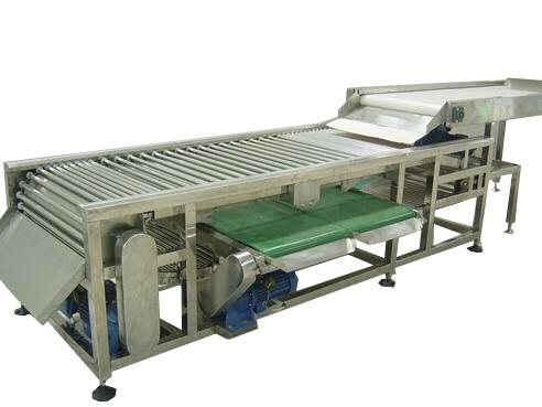 fruits grading machine